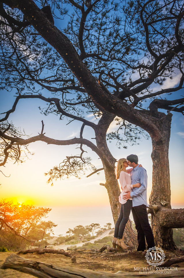 A couple kissing underneath a Torrey Pine Tree with the setting sun over the ocean's horizon.
