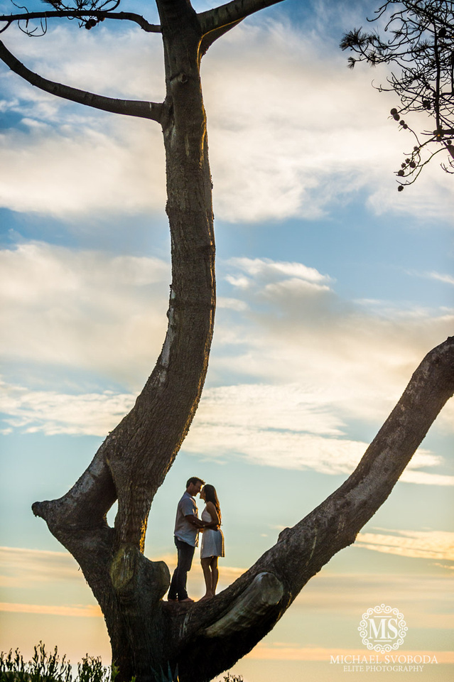 A couple standing in a tree kissing with sunset clouds behind.